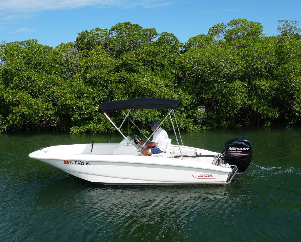 15 foot new boston whaler boat rental